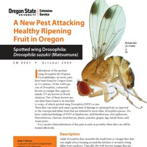 EM 8991 - A New Pest Attacking Healthy Ripening Fruit in Oregon
