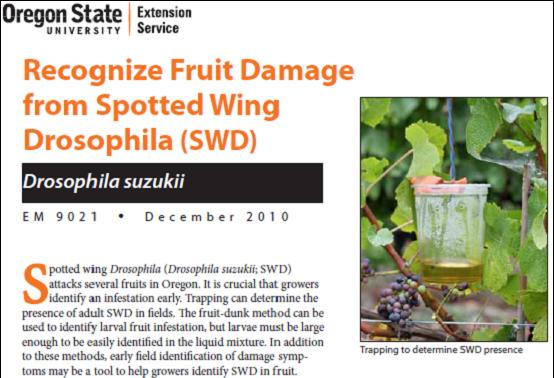Recognize fruit damage from spotted wing drosophila